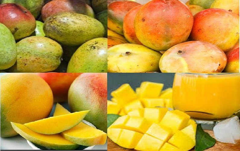 How African Mangoes Make Weight Loss Happen
