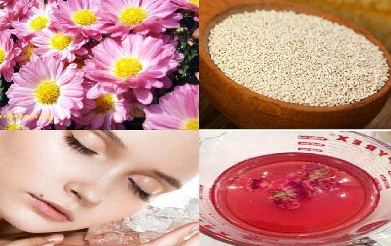 Daisy Extracts- The Secret of Everlasting Beauty